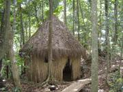 Mwena Carib indian Jungle Cabins hotel eco accommodation ...
