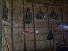 jungle accommodation storage